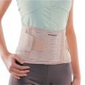 Back Support Belt Conwell